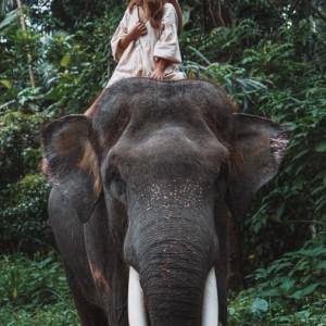 【迫力満点】バリ島で牙のある大きなぞうと遊んできた話。お値段も迫力あった・・。
